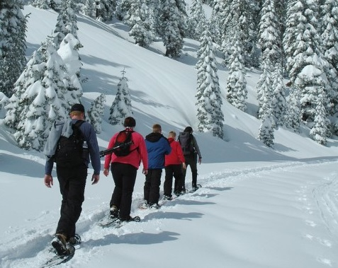 Snowshoeing Leadville Backcountry