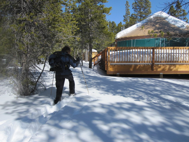 Into the Yurt