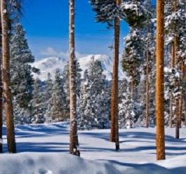 Scenic Snowshoe Elbert Massive